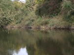 A Week on the River Wye